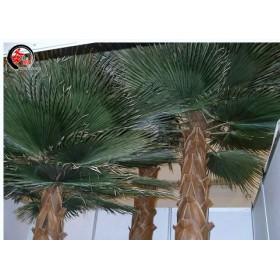 玻璃钢保鲜棕榈树仿真树等