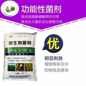 沃宝生物功能性菌剂|固氮解磷解钾菌生物有机肥菌种抗重茬菌改良