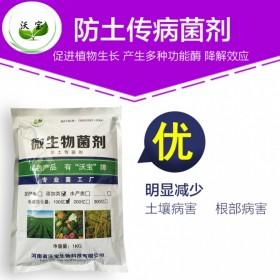 沃宝微生物防土传病菌剂|淡紫拟青霉|防根结线虫地下害虫