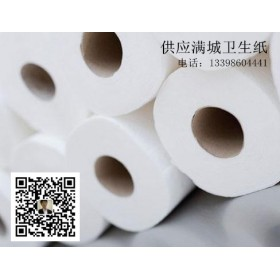 保定满城卫生纸加工厂 各种卫生纸厂家直供