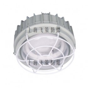 上海飞策 BPY-JO系列防爆环形荧光灯