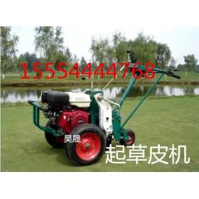 山东厂家直供高品质起草坪机 人造草坪机
