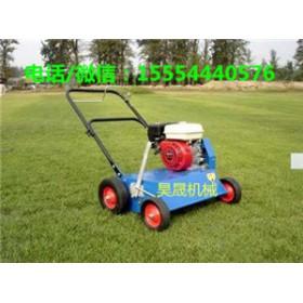 美化草坪的好帮手汽油梳草机  草坪梳草机 草坪透孔机