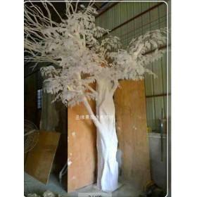 圣缘景观仿真白榕树厂家生产