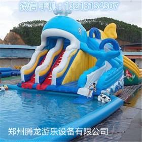 小鲸鱼充气水滑梯 儿童喜欢的夏季水上充气滑梯