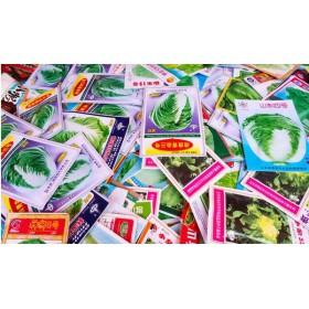 常州蔬菜种子生产厂家 辣椒种子价格18765720716