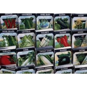 舟山线椒种子供应厂家 18765720716高产种子