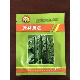深圳尖椒种子 牛角椒种子厂家