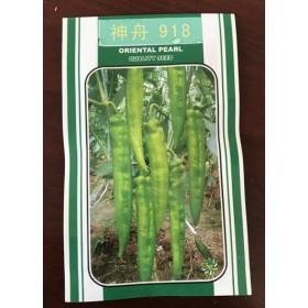 珠海长尖椒种子 线椒种子公司