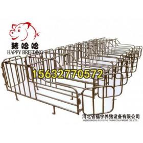沧州养猪设备专业厂家猪用限位栏价格母猪定位栏厂家