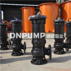 立式大型排污泵