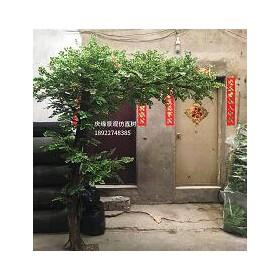 广州特价专业定制仿真金钱树厂家生产