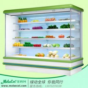 冰柜哪个品牌好2米欧款外机风幕柜冷柜价格广州厂家直销