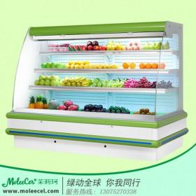 冰柜哪个牌子好2米欧款外机水果柜风幕柜厂家直销