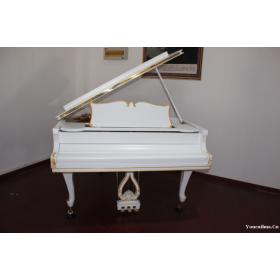 筝筝琴行 培训(古筝、钢琴、吉他、二胡、葫芦丝、)