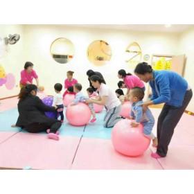 毛毛虫早教 儿童专注力思维感统训练