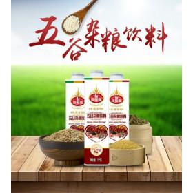 餐饮用五谷杂粮饮品1Lx8瓶批发