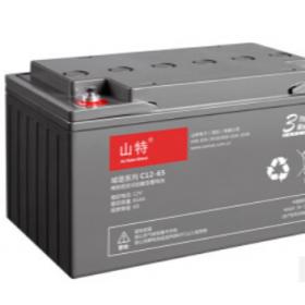 山特12V65AH 山特UPS电源  UPS蓄电池选湖北成特