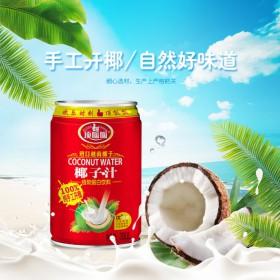 中山贴牌饮料厂家代加工蓝莓饮品