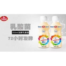 商超加盟乳酸菌饮品350ml12瓶装江西