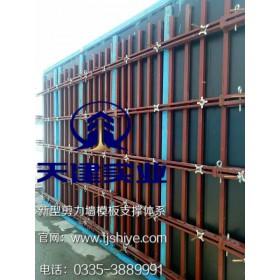 新型建筑模板支撑体系天建建材厂家批发价格