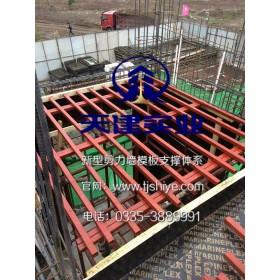 整体施工设备钢龙骨模板支撑体系