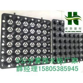 成都/贵阳2cm凹凸型排蓄水板网状交织排水板