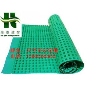 阜阳2公分3公分地下室排水板-塑料防护排水板