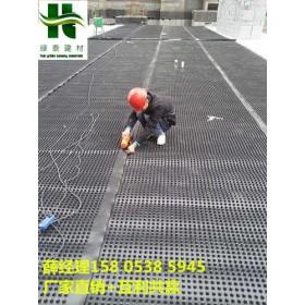 生产绿化种植蓄排水板-芜湖地下室排水板