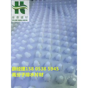焦作网格蓄排水板(商丘防护型)2公分排水板