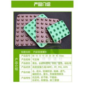 台州车库排水板防护型高分子塑料排水片材