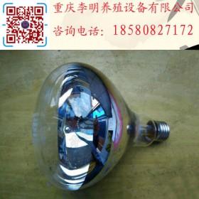 保温灯 养殖设备 红外线保温灯 养殖