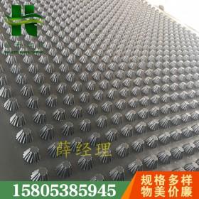 3公分4公分15公分车库排水板(温州)